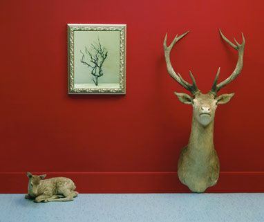 Trophy and Baby (Home Beautiful Series) 2005