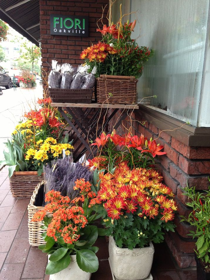 1000 images about fiori collection fall flowers arrangements on pinterest florists - Potted autumn flowers ...