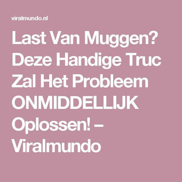 Last Van Muggen? Deze Handige Truc Zal Het Probleem ONMIDDELLIJK Oplossen! – Viralmundo
