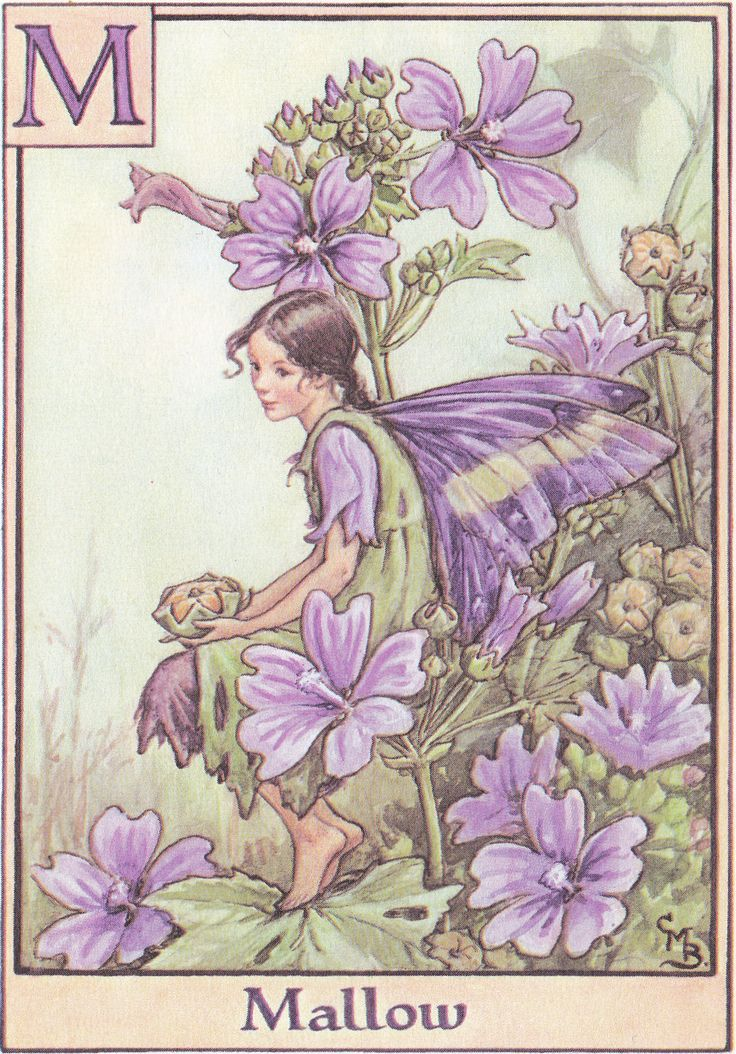 From 'A Flower Fairy Alphabet' (1934) by Cicely Mary Barker