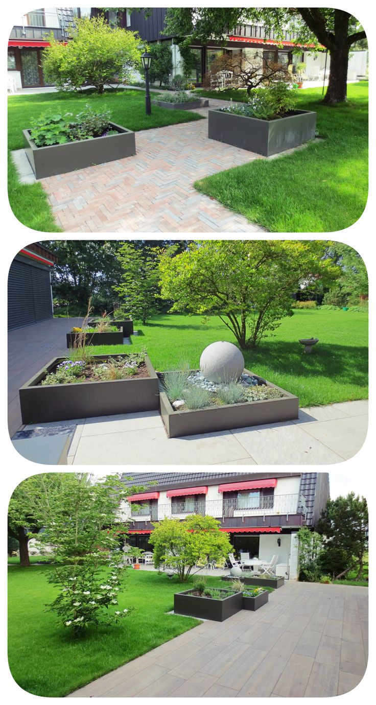 garden design / construction, lawn, plants, trees, raised bed, magnolia