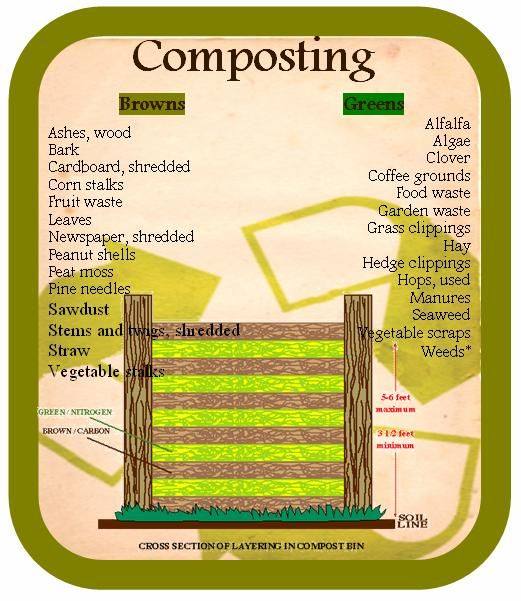 46 Best Composting Images On Pinterest