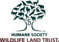 February 27, 2017  Border Wall May Negatively Affect 111 Endangered Species Ben Callison, president of the Humane Society Wildlife Land Trust