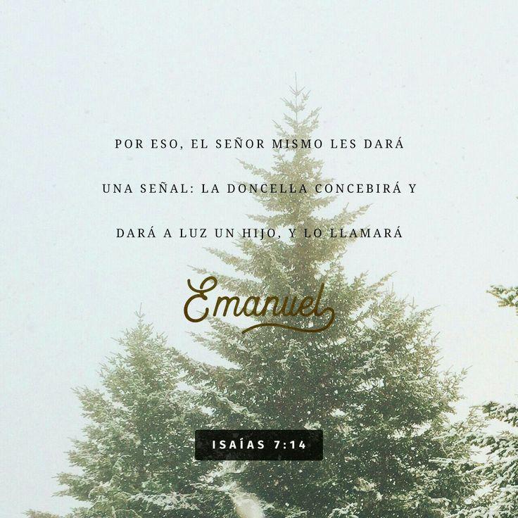 """Muy bien, el Señor mismo les dará la señal. ¡Miren! ¡La virgen concebirá un niño! Dará a luz un hijo y lo llamarán Emanuel (que significa """"Dios está con nosotros""""). Isaías 7:14"""