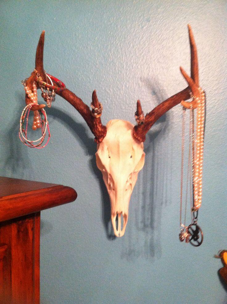 Deer skull repurposed as a jewelry holder
