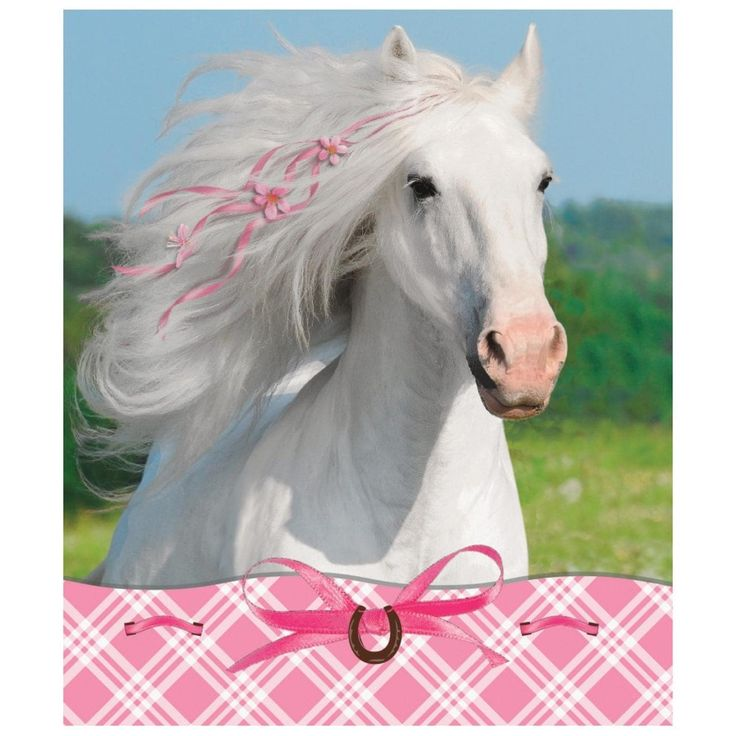 Club Pack of 24 Pretty Pink Heart My Horse Notepad and Stickers Party Favors