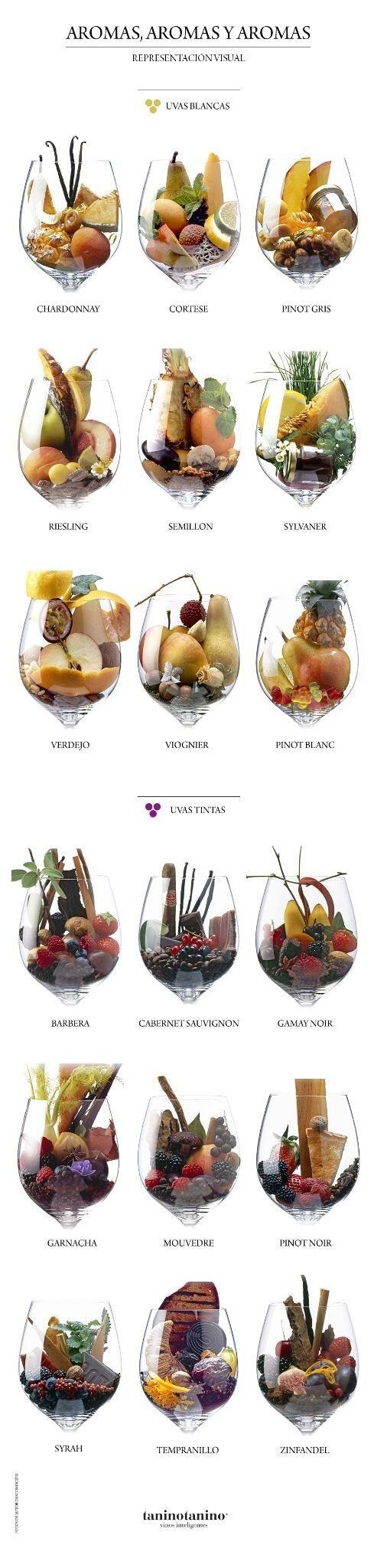 Aromas, Aromas, aromas, representación visual en copas de los aromas de vino blanco y tinto