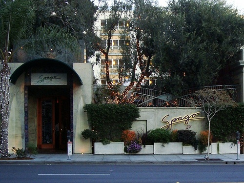 Spago is Wolfgang Puck's famous restaurant in Beverly Hills that opened in 1982.