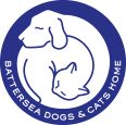 Battersea Dogs & Cats Home. We adopted our amazing sweet dog from them.