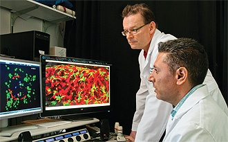 Islet physiologist Per-Olof Berggren, the Mary Lou Held Visiting Scientist at DRI, and DRI scientist Midhat Abdulreda, seated, examine in vivo images of islets transplanted in the eye.: Physiologist Per Olof, Midhat Abdulreda, Islet Physiologist, Per Olof Berggren, Lou Held, Held Visit, Dry Scientists, Islet Transplant, Mary Lou