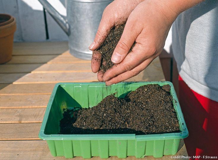 Tous les conseils pour réussir ses semis à coup sûr I choisissez du bon terreau spécial semis et ajoutez un peu de vermiculite pour aérer le tout.
