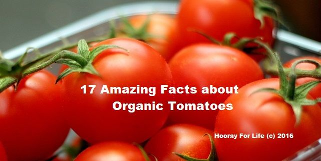 17 Amazing Facts about Organic Tomatoes