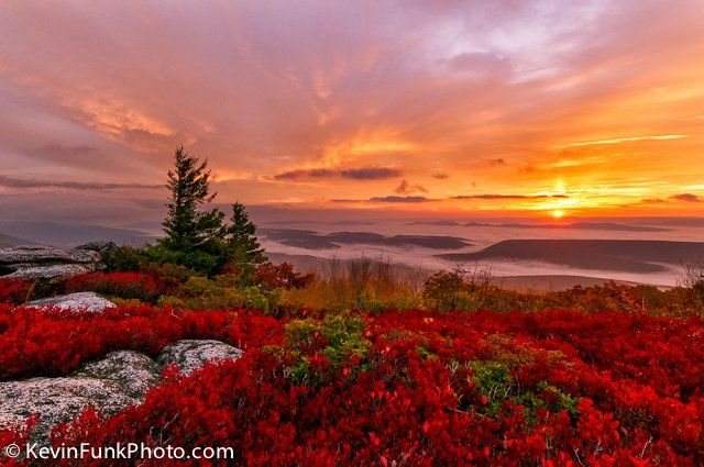 west virginia landscape photography | ... Rocks Dolly Sods Wilderness - West Virginia | Kevin Funk Photography