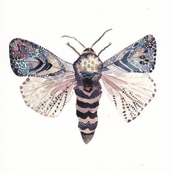 Moth 8.5 x 8.5 Archival Print by unitedthread on Etsy