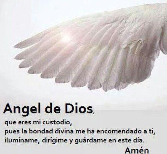 Angel de Dios que eres mi custodio, pues la bondad divina me ha encomendado a tí, ilumíname, dirígeme y guárdame en éste día. Amén.