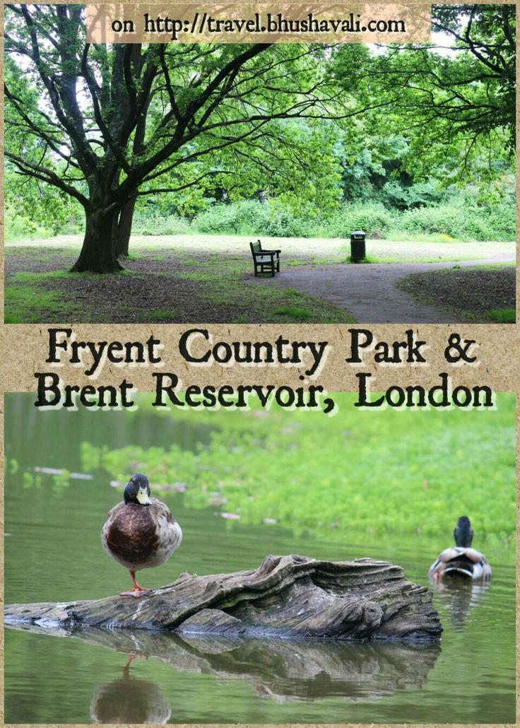 One of the greenest suburbs of London... #travelblog #photoblog #travelblogger #ttop #VisitLondon #VisitEngland #LoveGreatBritain #Wembley #Brent