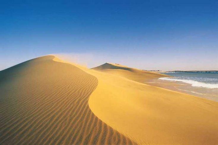 Dunas Cabo Polonio, Uruguay - ever been @Gaby Saucedo Saucedo Castro-Fontoura?