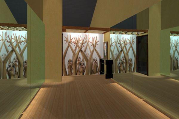 dancing classroom interior decoration - photo #15