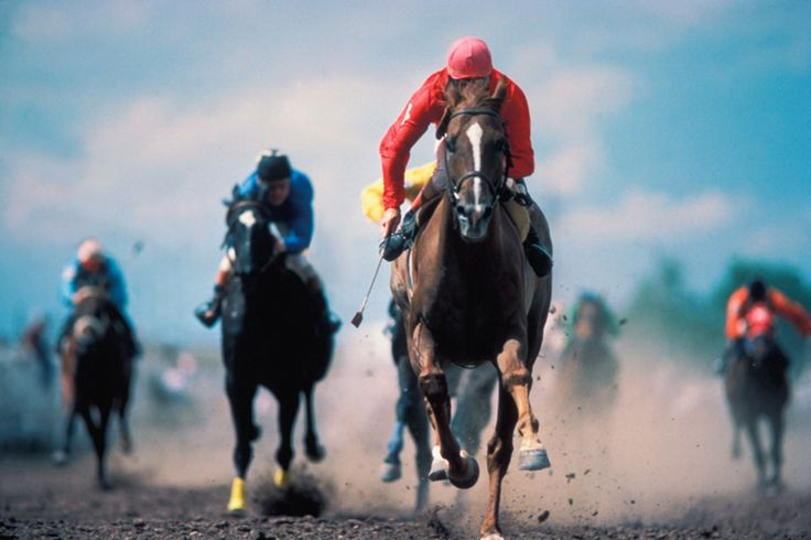 In recent months, some of the horse world's most prominent players have placed a bet on animal welfare as a means to save the long-venerated sport.