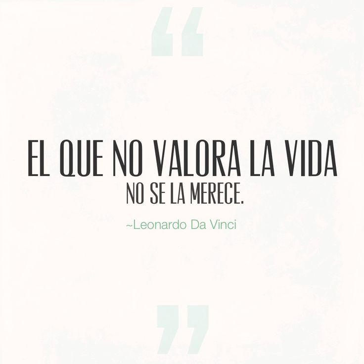 Frase de valorar la vida ~Leonardo Da Vinci El que no valora la vida no se la merece. Un poco fuerte. Pero en realidad la vida nos ofrece muchísimas cosas bellas. Por ello hay que darle su valor.