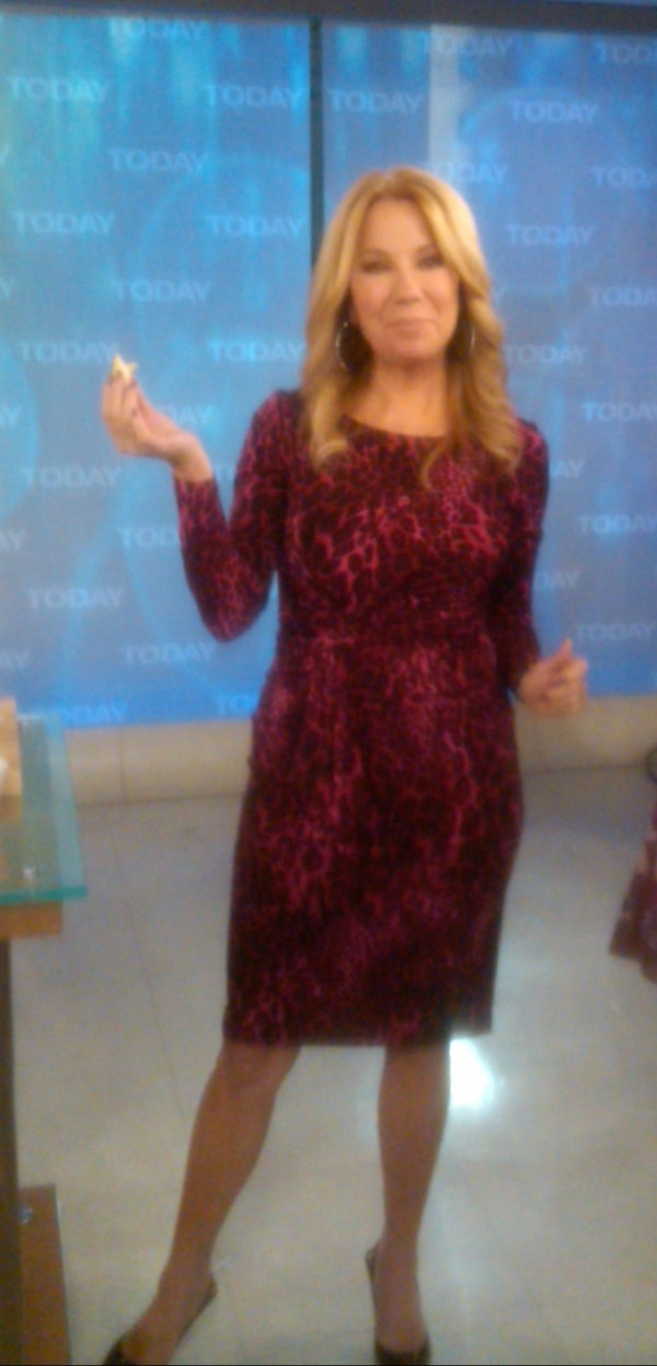 kathie lee gifford in david meister