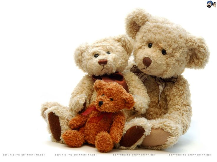 Dating for teddy bears