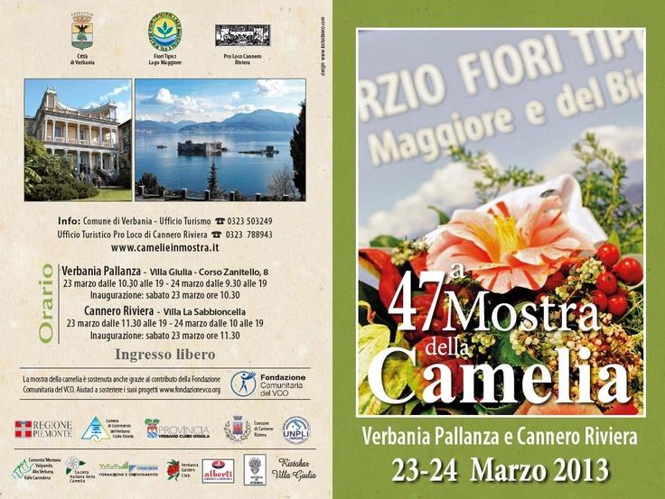 47° Camelia's exhibition at Lake Maggiore - Verbania Pallanza and Cannero Riviera