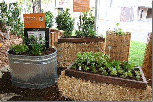 More raised bed alternatives from Johanna. You can see that if you want a taller straw bale garden setup (for less bending), you can just turn the bale on its side: