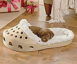 Cute #shoe shaped bed for #cat or small #dog - looks cute and cozy for your #pet