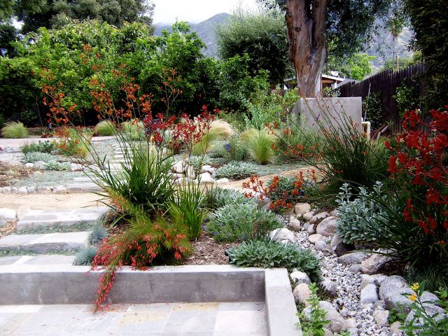 55 best see canyon exterior images on pinterest amethyst for Grassless garden designs