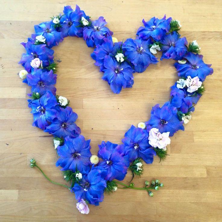 Blue Delphinium Love Heart Avonlea Flowers