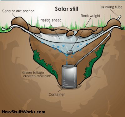 How to make a solar still for water collection in an emergency