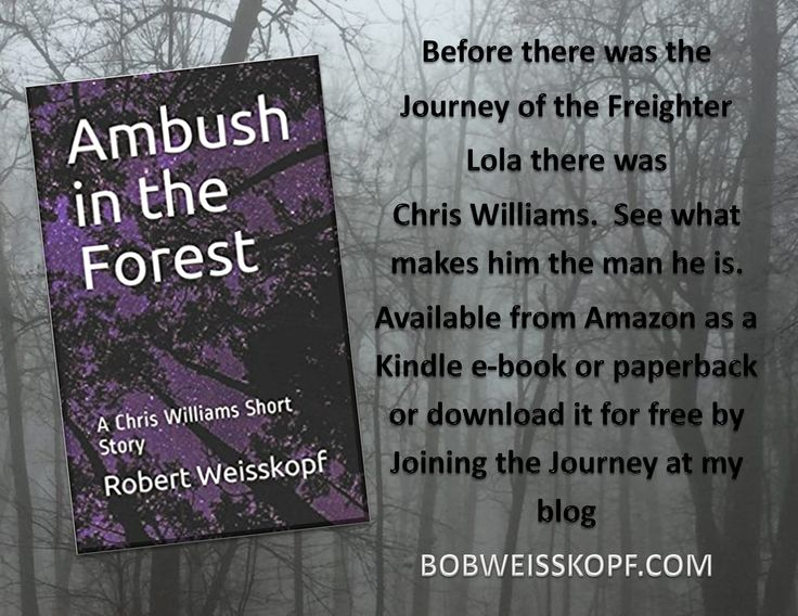 Ambush in the Forest - Before there was the Journey of the Freighter Lola there was Chris Williams.  See what makes him the man he is.  Available as an Kindle e-book or paperback at http://amzn.to/2sy81yF or join my email list and receive the e-book for free at http://wordpress.us13.list-manage.com/subscribe?u=7a1b29a35929574de0d53c473&id=1bfe421460