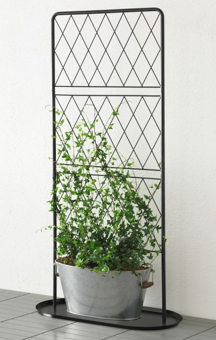 bars trellis with base plate black movable walls plants and climbing. Black Bedroom Furniture Sets. Home Design Ideas