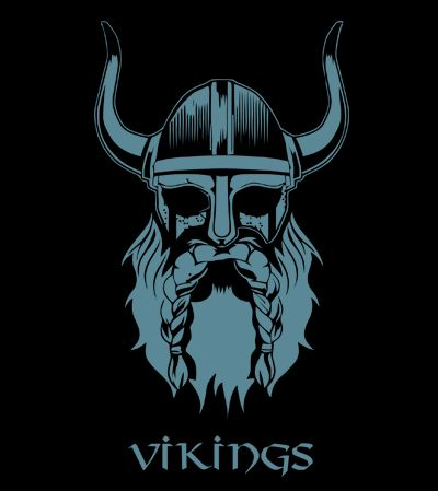 Tee shirt Vikings Tête de Vikings LOGO                                                                                                                                                                                 Plus