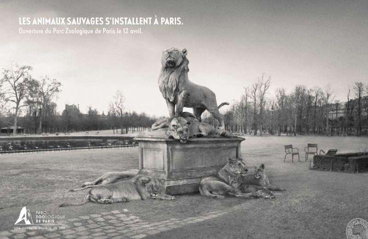 Le Parc Zoologique de Paris fait sa pub  Les animaux sauvages investissent la ville pour la réouverture du Zoo. http://www.artofteasing.fr/article/20140411-parc-zoologique-de-paris-campagne-pub/