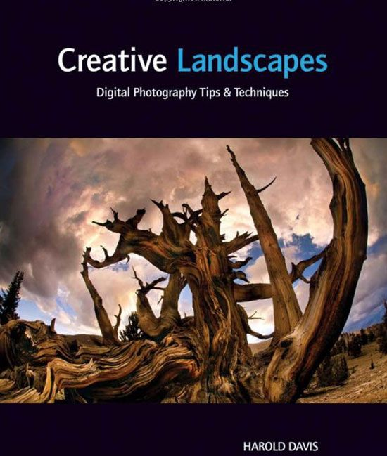 Some of the best photography books to help you become a pro