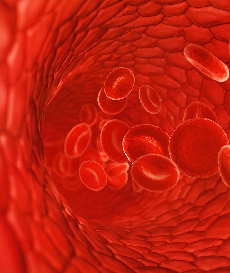 ENDLICH DEN BEFUND VERSTEHEN Was verraten meine Blutwerte? Fast jeder musste schon mal ein Blutbild machen lassen, aber eigentlich weiß keiner, was die ganzen Zahlen und Werte auf dem Auswertungsbogen bedeuten – unser Autor erklärt seinen Befund