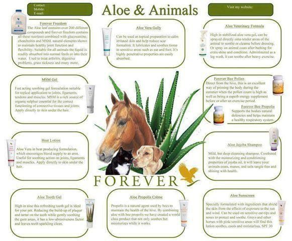 Aloe benefits animals too!