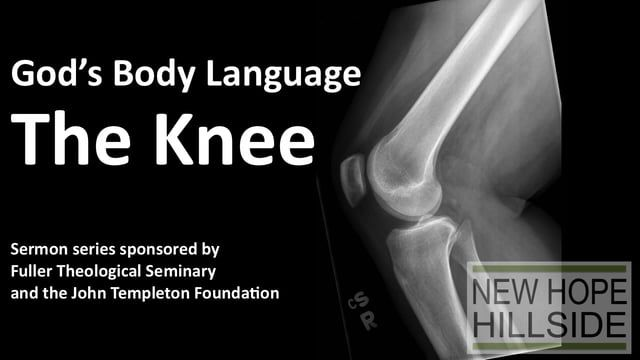 "We continue our 'God's Body Language' science series with a look at the knee. What do your knees teach you about  who God is?  ""I bent down to feed them..."" God in Hosea 11:4, NIV  ""It is amazing to me that the knee allows the body to function as it does. In reality, the knee does not have a lot of inherent bony stability, yet the forces it absorbs to do things like pivoting during an athletic activity are huge."