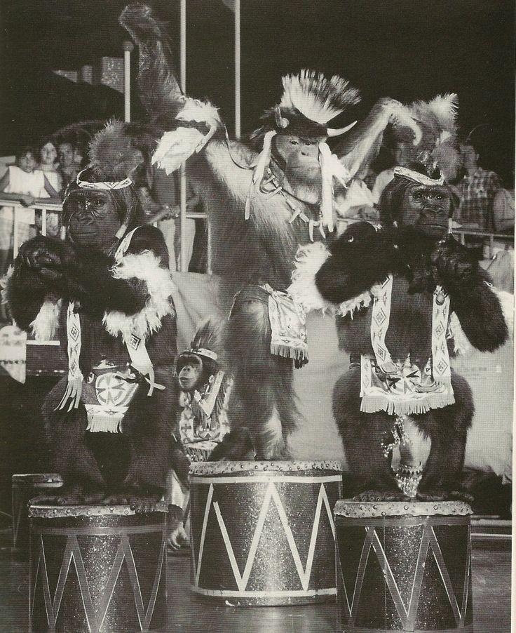 Berosini At Circus Circus Las Vegas, Nevada.  Late 1960′s.