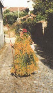 ALCAIDE - ALDEIA DA GARDUNHA - Abril 2012 - Um Maio revestido com giestas floridas e o varapau.
