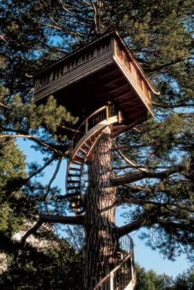 Cool Treehouses from around the World | Cool Things | Pictures | Videos