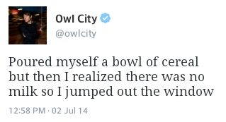 Owl City Tweets