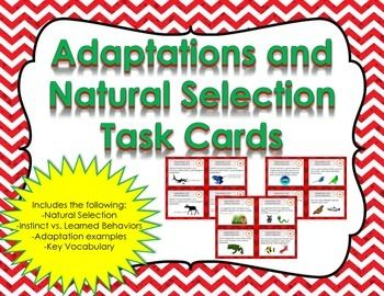 Adaptations and Natural Selection Task Cards.  This interactive set contains 32 different cards. Challenge your students to learn the basics of Adaptations. These cards are great for review, rotations, partner work, or independent study. Included in this set is the following:-Charles Darwin and Natural Selection-Instinct vs.