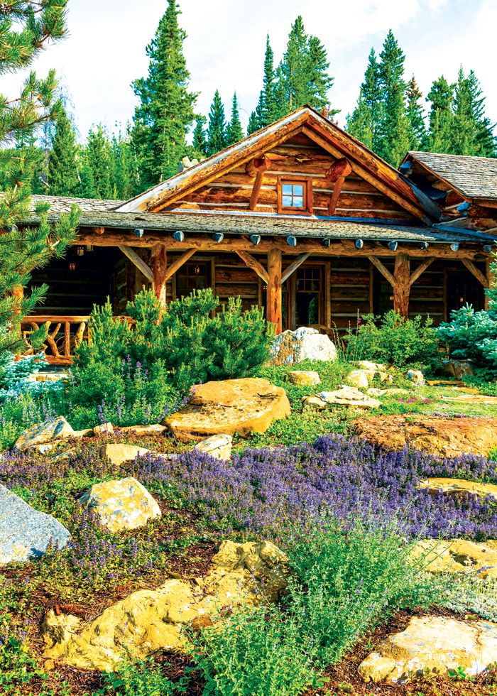 34 best images about family compound on pinterest the for Cabin landscaping