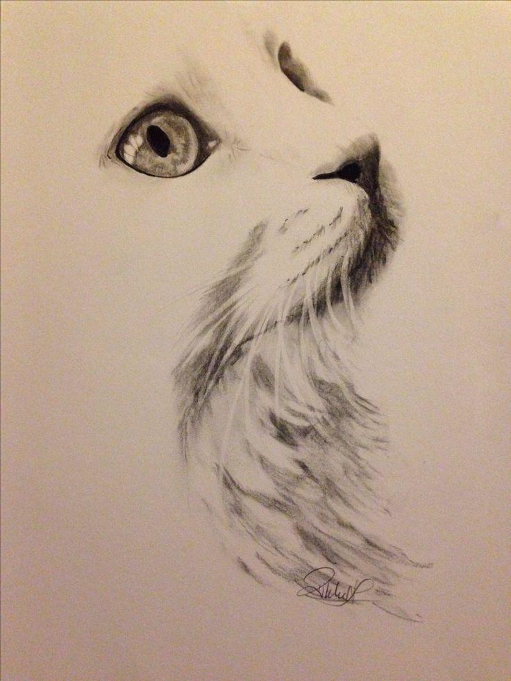 DIY beauty & Face masks : Illustration Descrip…