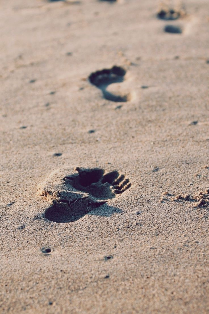 """Search """"footprints"""" Free Photos & Stock Images - Visual Hunt"""