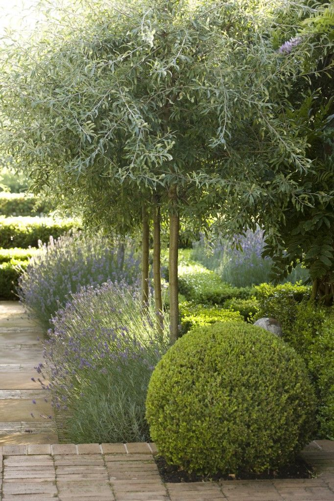 51 best Garden & Landscaping images on Pinterest | Small gardens ...