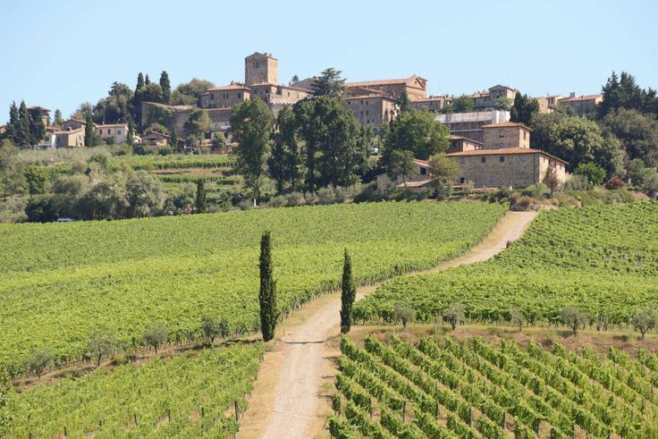 """Fontodi Chianti Classico Gran Selezione """"Vigna del Sorbo. Cosimo Commisso spills the details on another sublime wine, this one from the rustic, Florence-based winery Fontodi Located in Florence"""